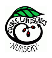 Landscaping - Edible Garden